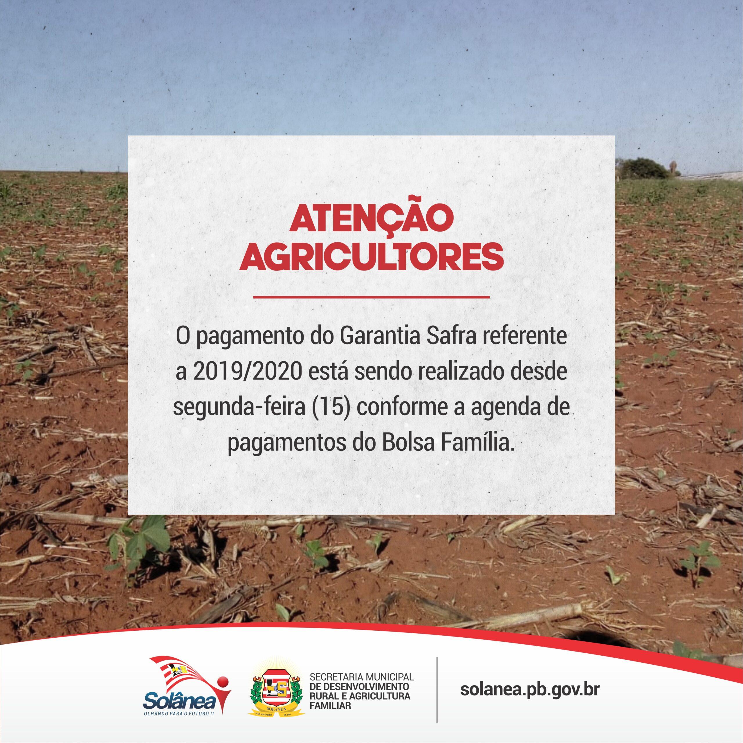 Agricultores de Solânea recebem, a partir de hoje, pagamento do Garantia Safra.